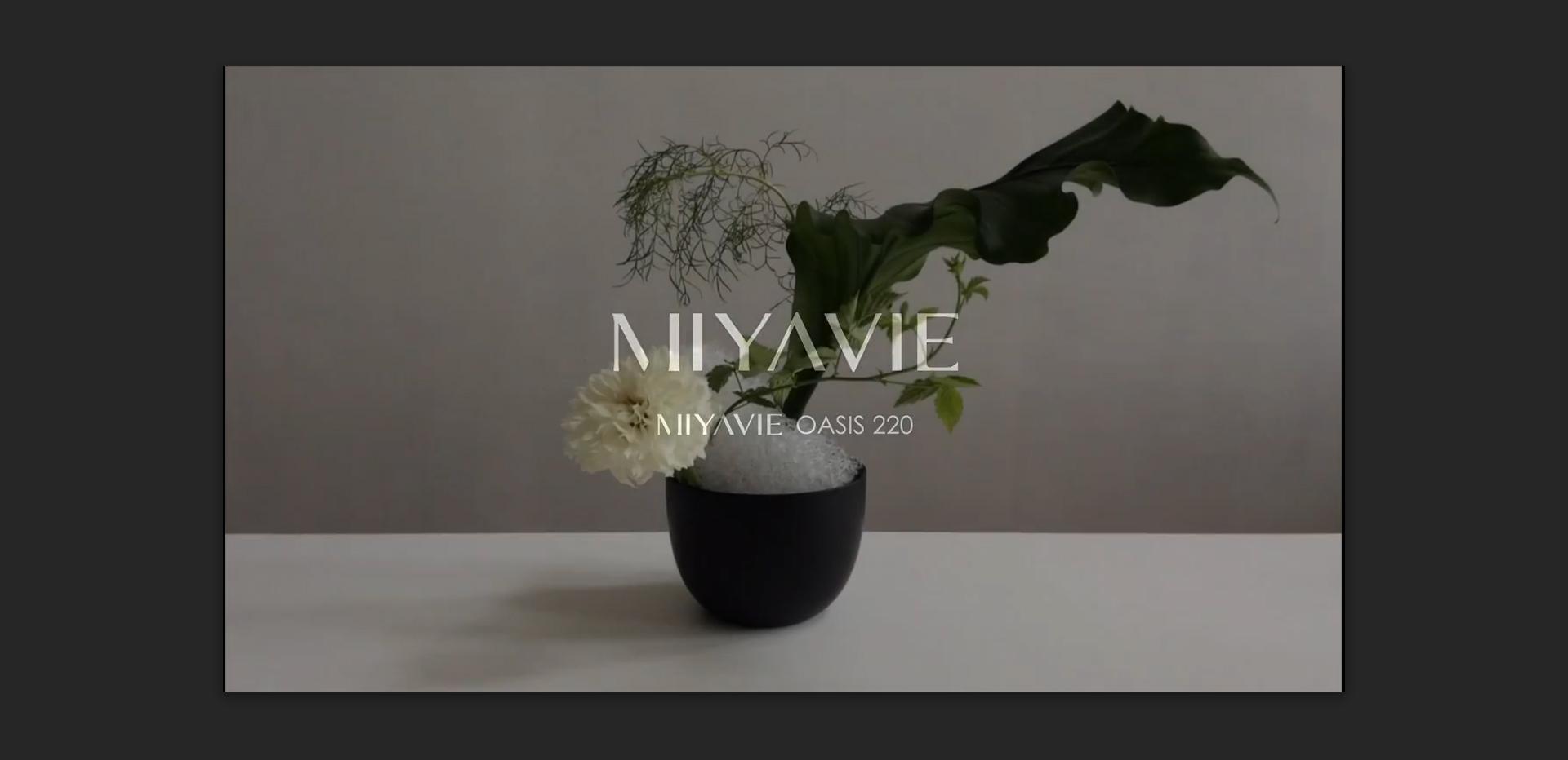 MIYAVIE ART Collection OASIS 220